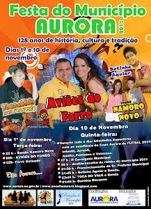 FESTA DO MUNICÍPIO 2011