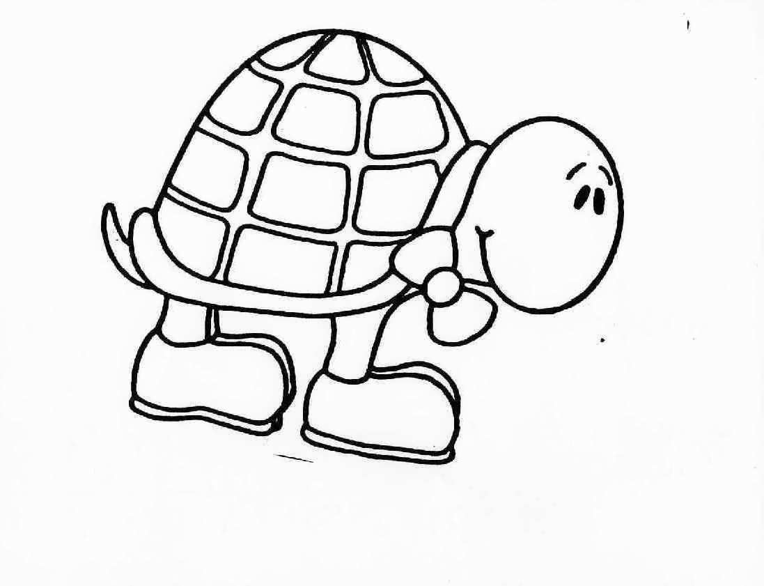 Turtle cute animal pages printable for drawing for Turtle coloring pages