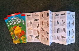 BIRDS OF BC FOLD-OUT