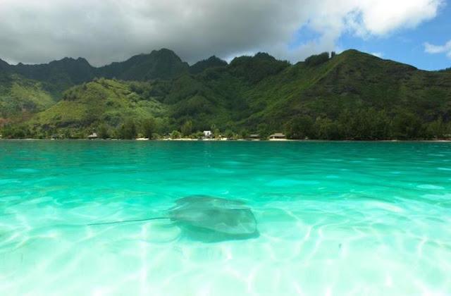 Air laut Bisa Perlambat Dampak Perubahan Iklim
