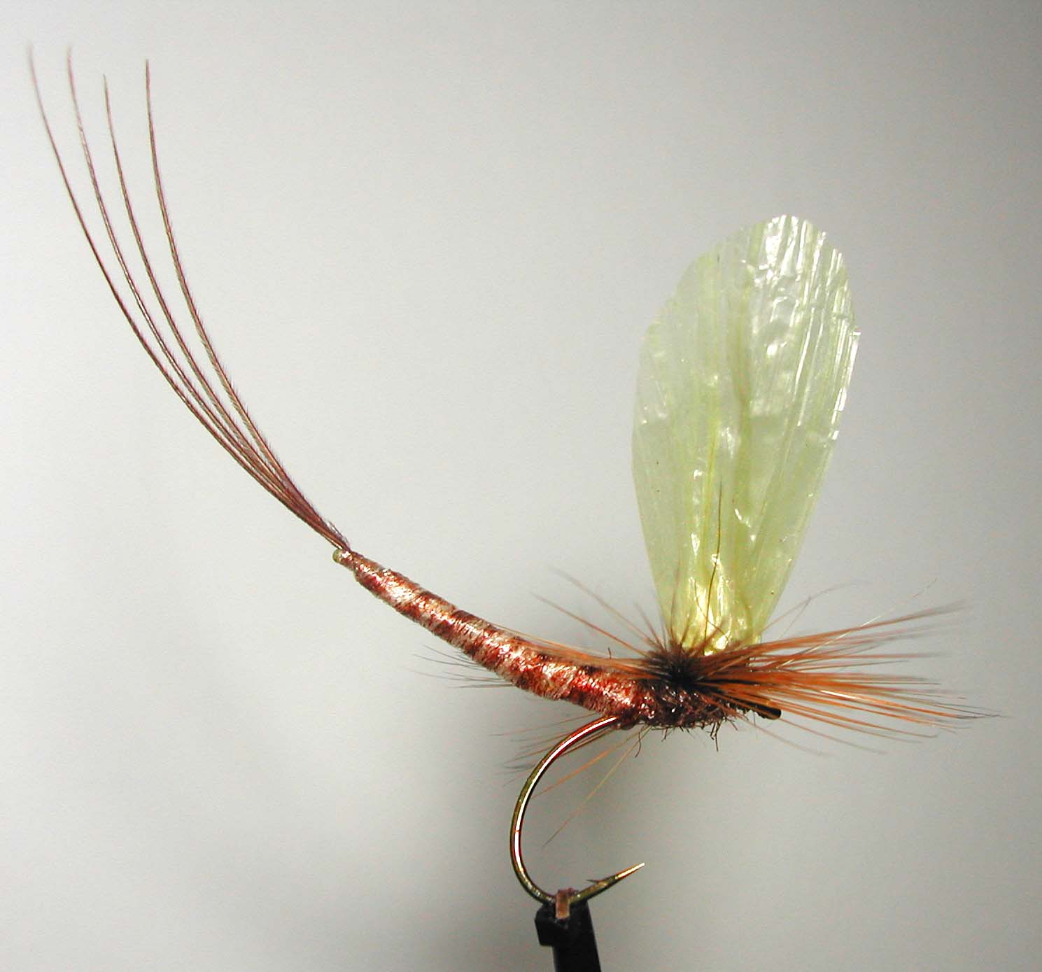 Fly tying nation extended abdomen reel wings mayfly for Fly fishing tying