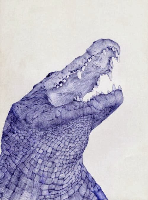 04-Crocodile-Sarah-Esteje-ABADIDABOU-Hyper-realistic-Ballpoint-Pen-Animals-www-designstack-co