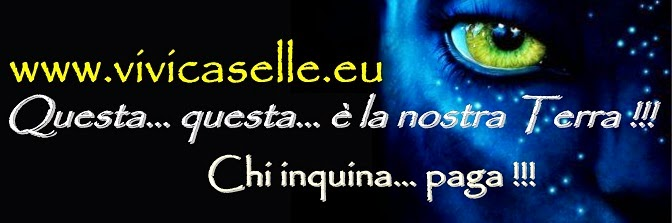 www.vivicaselle.eu