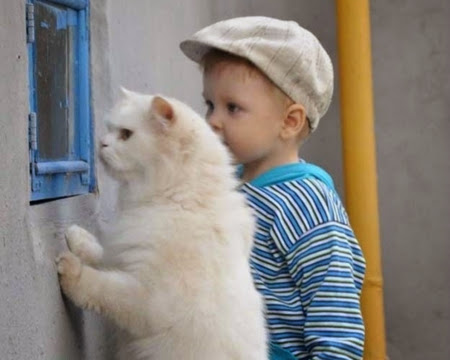 Baby and animals 7