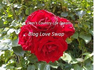 Blog love swap