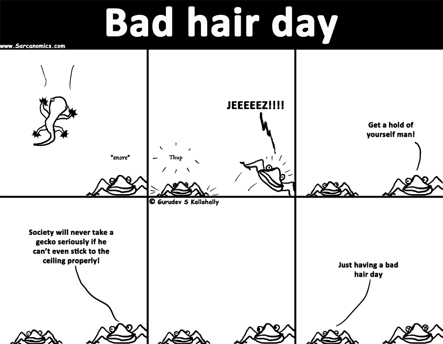 What does bad hair days mean for Geckos?