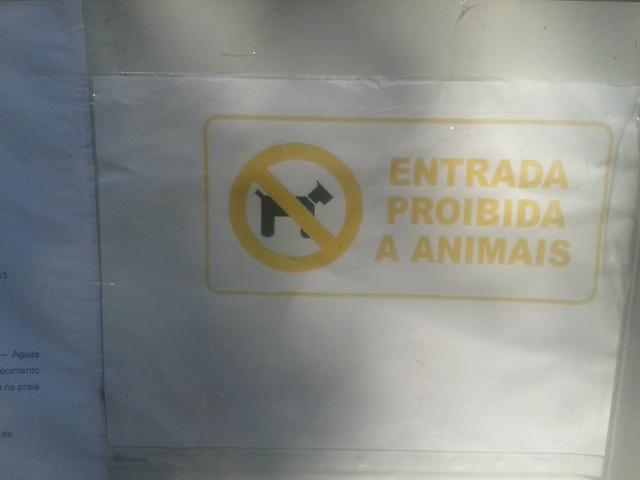 Proibida a entrada a animais