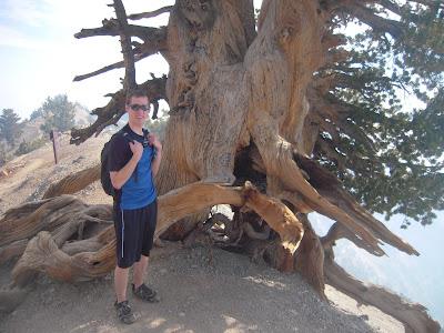 Mt. Baden Powell, elevation 9,400 ft.