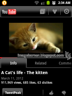 Congratulations! You may now go waste some time and watch cat videos.