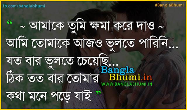 Bangla sad love quote in bengali - Ami Prithibite ar nei tomake valobasar jonno