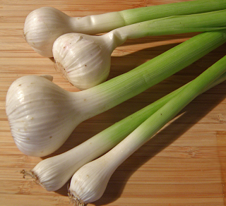 Bunch of Green Garlic of Different Sizes