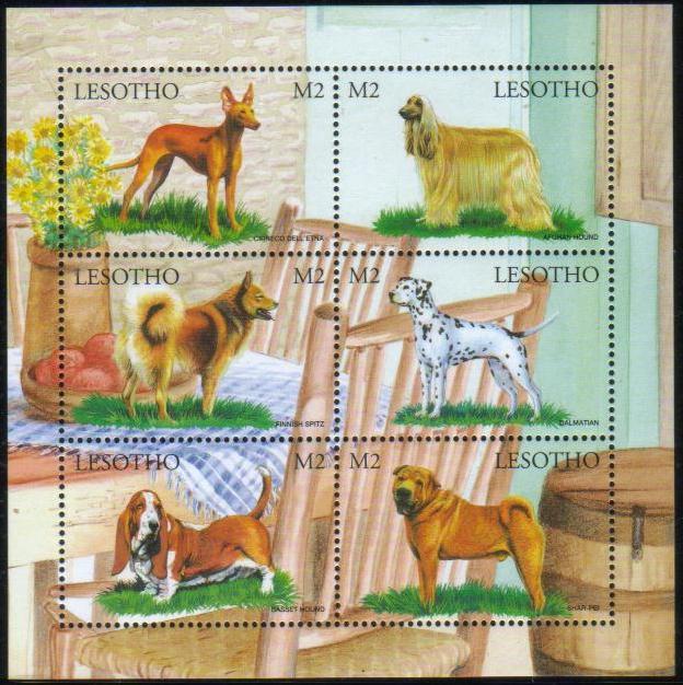 1999年レソト王国 キルネコ・デルエトナ(シチリアン・グレーハウンド) アフガン・ハウンド フィニッシュ・スピッツ ダルメシアン バセット・ハウンド シャー・ペイの切手シート