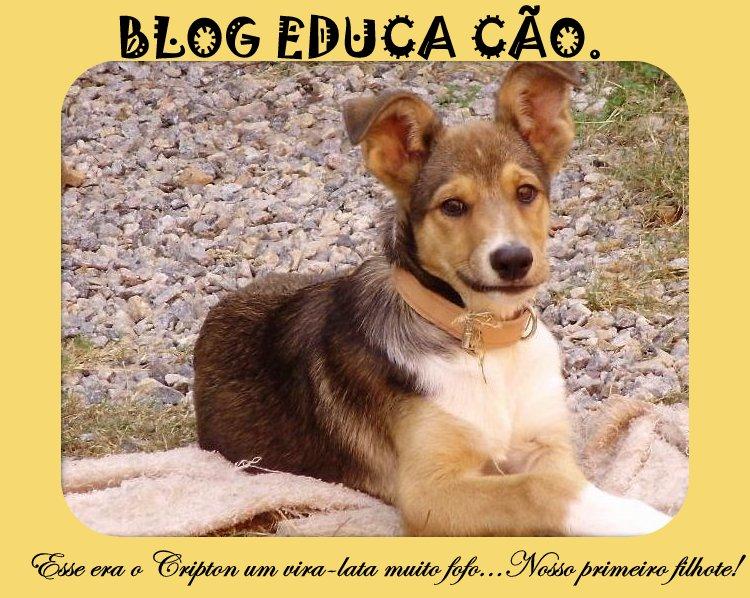 EDUCA CÃO.