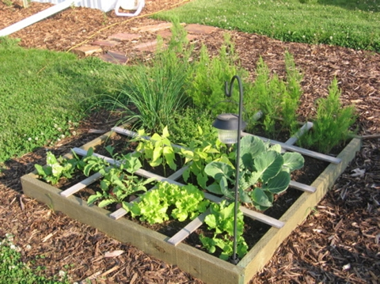 Home and design create a square foot garden for Square garden designs