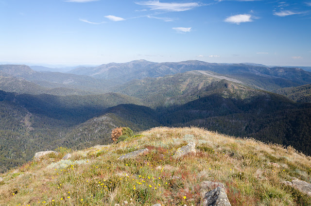 mt buller in distance from howqua feeder track