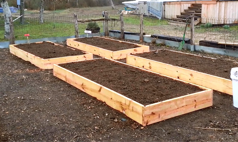Daddykirbs garden building filling raised beds for Raised bed garden designs
