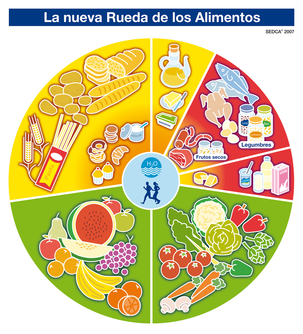 RUEDA DE LOS ALIMENTOS
