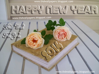 Beautiful Latest Happy New Year 2014 Wallpapers