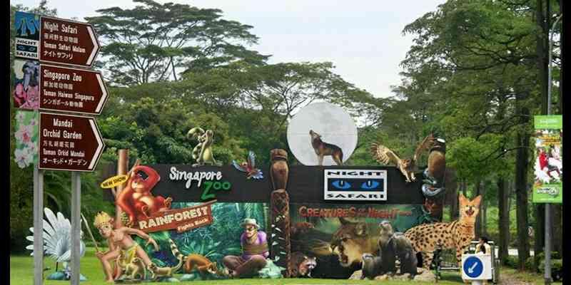 Singapore Zoo: Cara Naik MRT Dan Harga Tiket Singapore Zoo