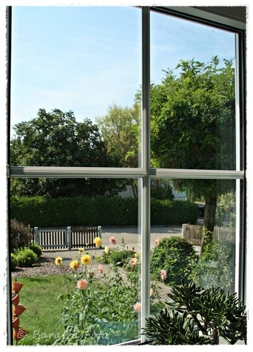 Barafras kochl ffel blick aus meiner k che oder peepshow for Fenster immer im vordergrund