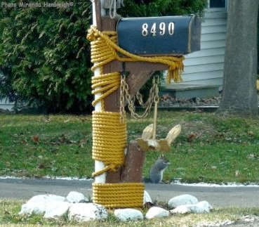 Love that letterbox mailbox with anchor mast and squirrel for Boat mailbox