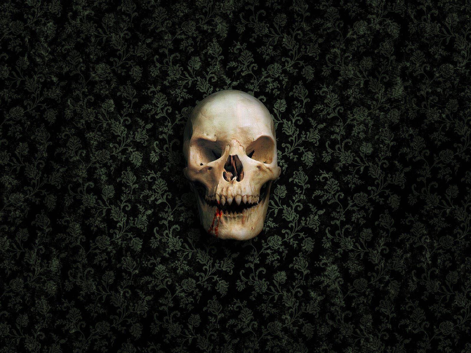 Skull desktop wallpapers horror skull desktop backgrounds horror skull