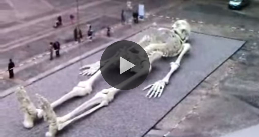 Giant human skeleton real