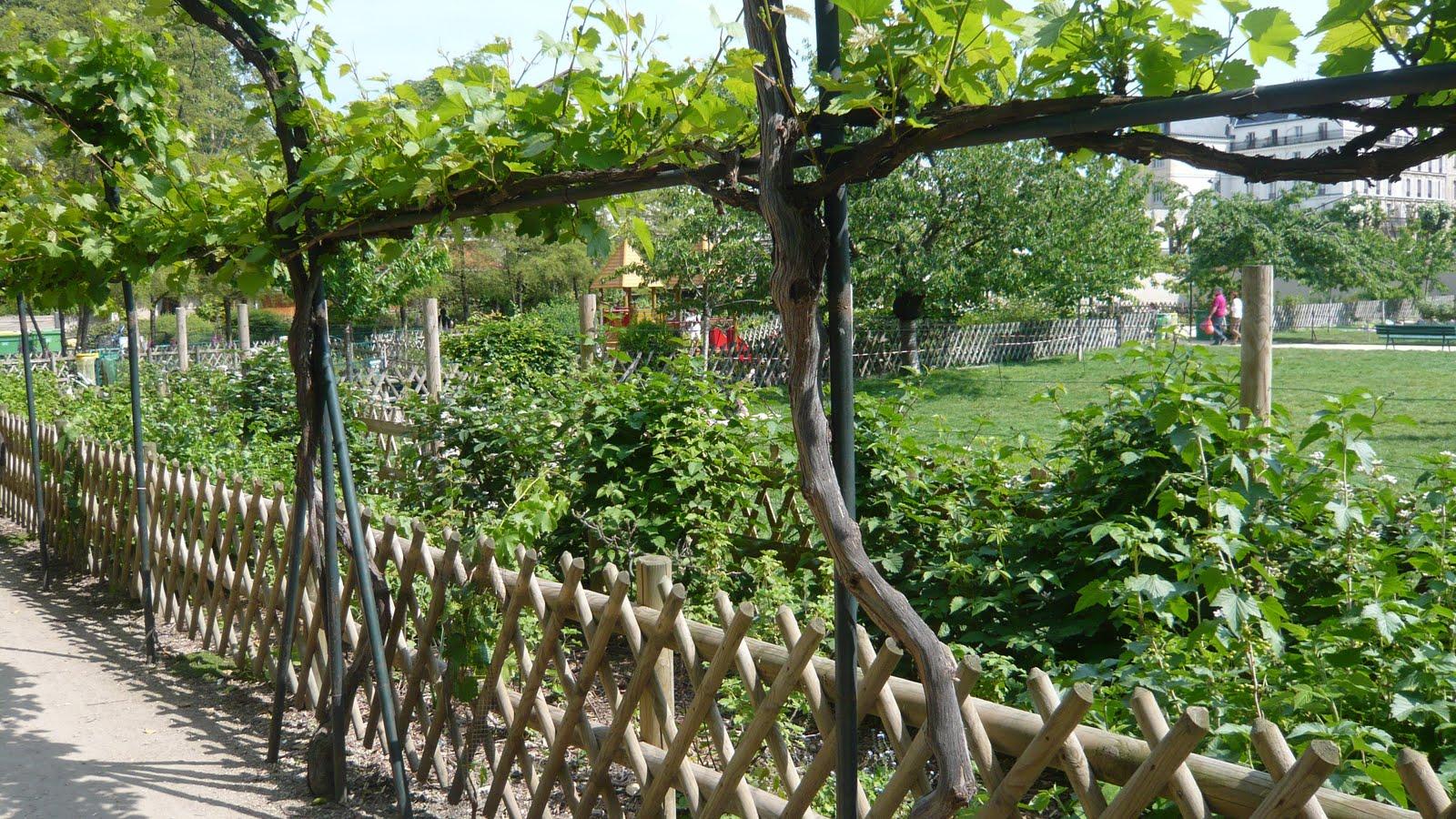 Ma poussette paris jardin catherine labour croquer - Jardin catherine laboure ...