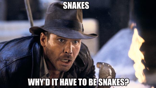 Indiana+Jones+Meme+copy.png