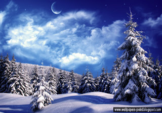 Winter Wonderland Wallpapers download