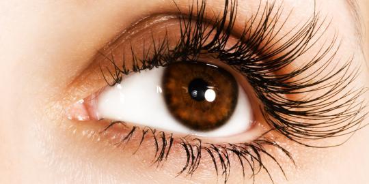 Membuat mata indah dan bersinar
