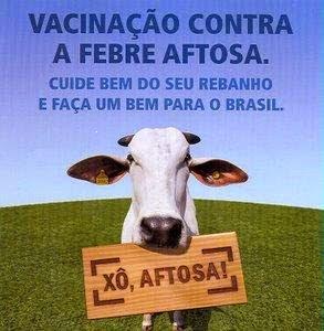 A Secretaria de Agricultura de Mari/PB realiza campanha de vacinação contra Febre Aftosa