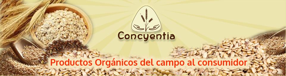 Concyentia   -   recetas organico