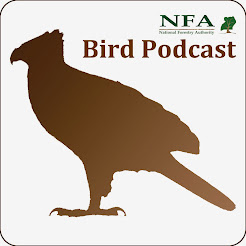Enjoy listening fresh bird calls and episodes from Uganda!
