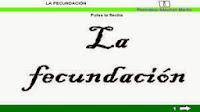 http://cplosangeles.juntaextremadura.net/web/edilim/tercer_ciclo/cmedio/las_funciones_vitales/la_funcion_de_reproduccion/la_fecundacion/la_fecundacion.html