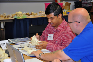 Teachers examine the top of a skull.
