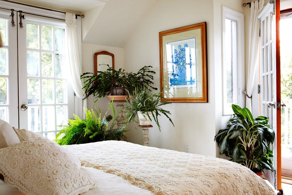 Комнатные цветы в интерьере спальни 30
