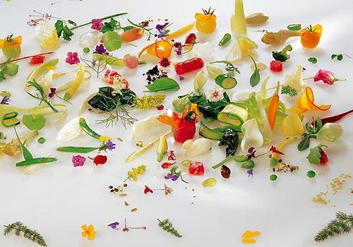 Gastronomia culinaria gourmet arte y gourmet for Cocina molecular definicion