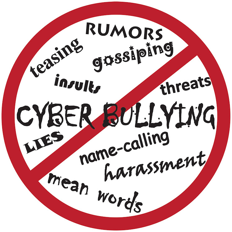 Cyber Bullying: Literature Review