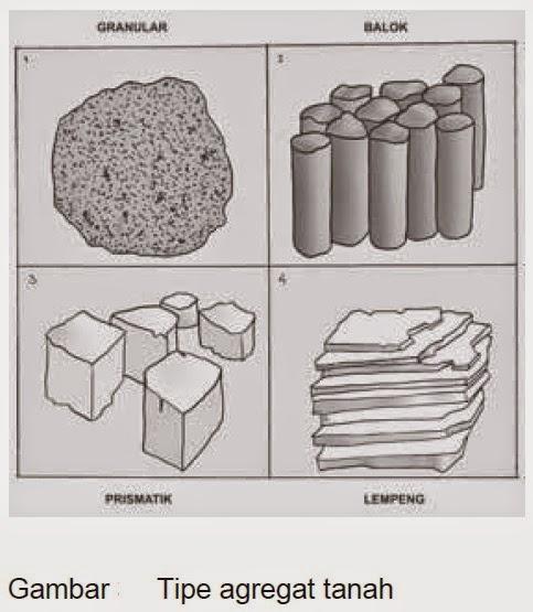 Tekstur dan Struktur Tanah pada Pertanian Umumnya