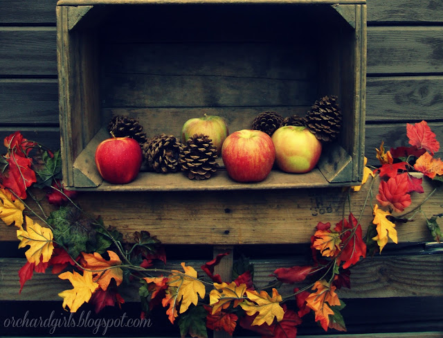 Fall Decor - Fall Photography