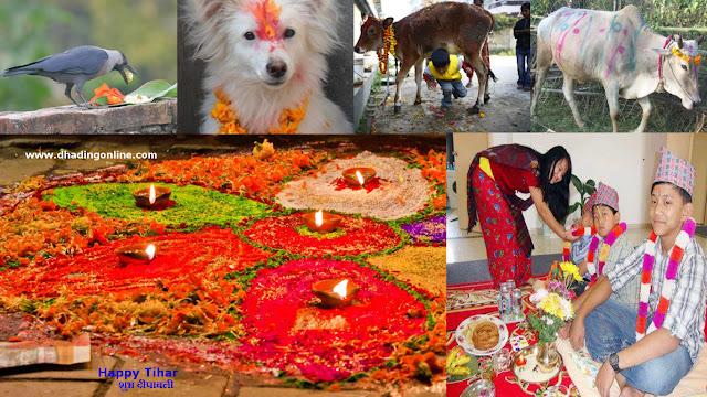 Tihar or Deepawali festival in Nepal