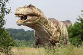 Tyrannosaurus Rex image
