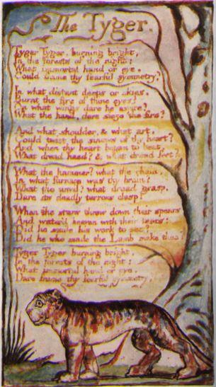 Vos poèmes préférés - Page 2 Tyger
