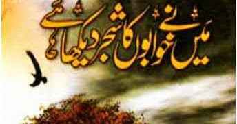 Download Maine Khwabon Ka Shajar Dekha Hai Novel By Umera Ahmed Read Online Pdf