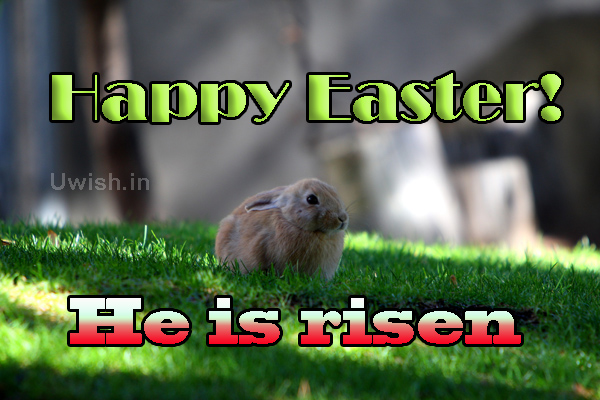Happy Easter. He is risen  Happy easter e greeting card and wishes.
