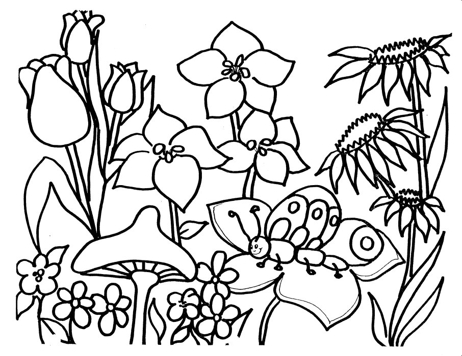 free plant coloring pages - photo#18