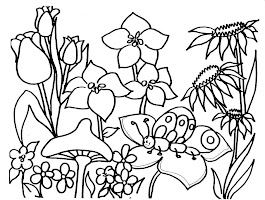 Nature Animal Coloring Pages