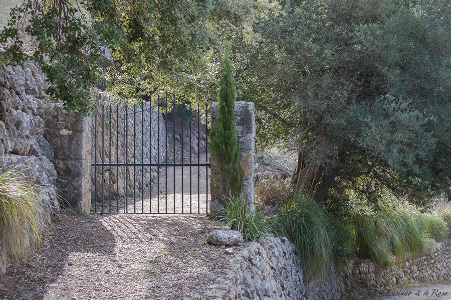 Camino de la ermita de Valldemossa