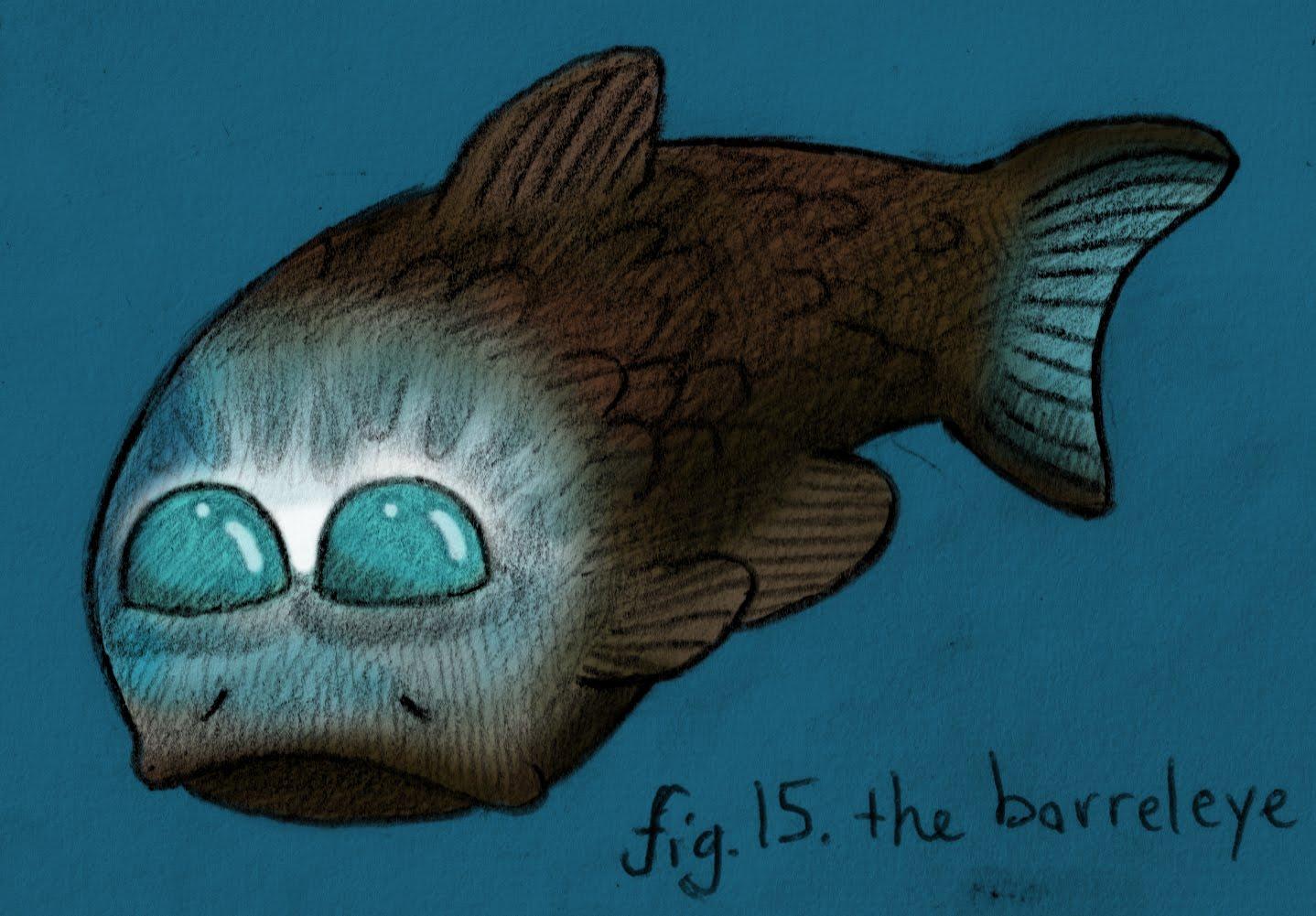 Jun makes stuff 30 the barreleye for One eyed fish